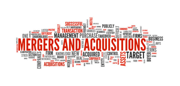 merger_and_acquisition_word_map
