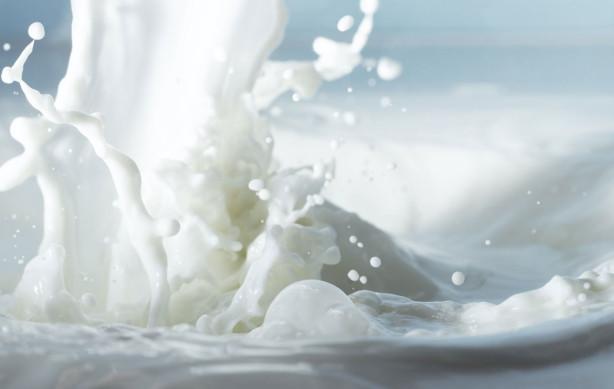 milk files